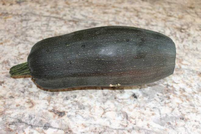 Destined for Stuffed Baked Zucchini